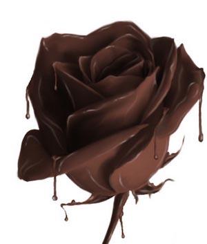 Отзывы о шоколадной диете