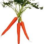 morkovnaya-dieta-otzyvy