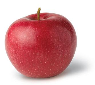 Отзывы о яблочной диете