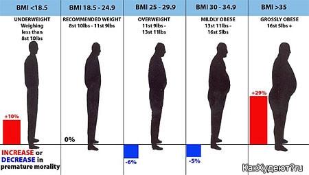 Индекс массы тела и показатели смертности