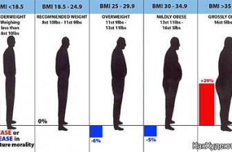 Боитесь садиться на диету? Не волнуйтесь, пухлые люди живут дольше своих тощих ровесников (доказано наукой)