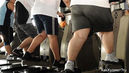 Толстяки в спортзале