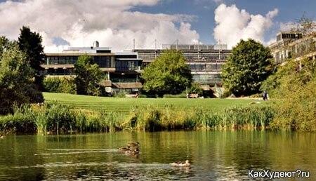Батский университет