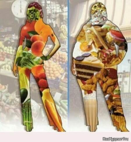 Сколько людей — столько диет